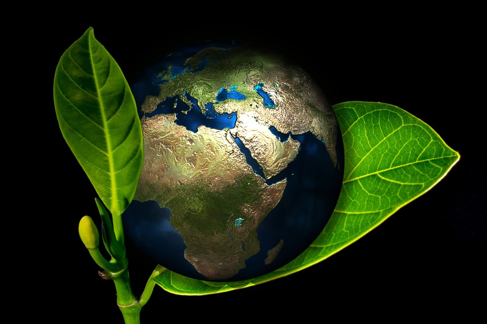 Earth Day Celebration – Friday, April 20th