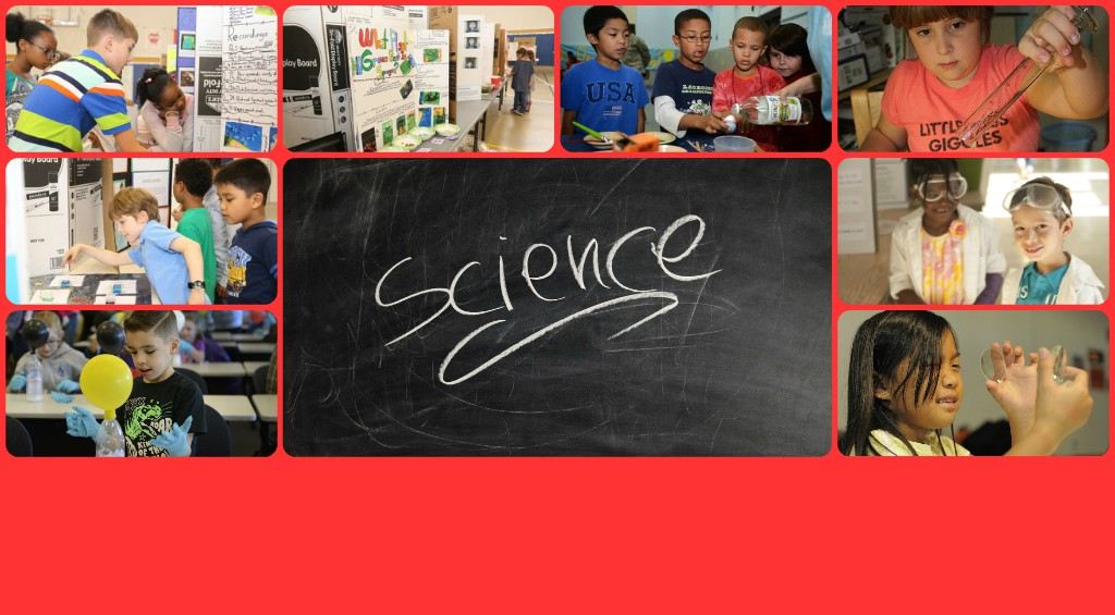 Science Fair – February 21st